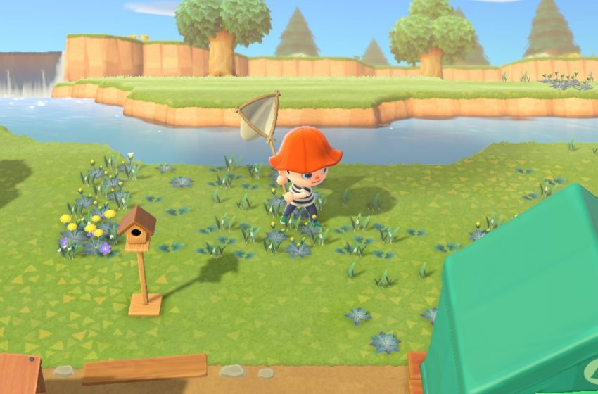 animal crossing villagers catching bugs