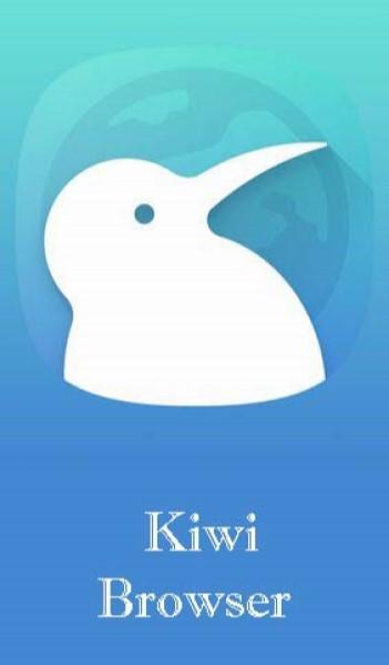 Kiwi Browser (open-source)