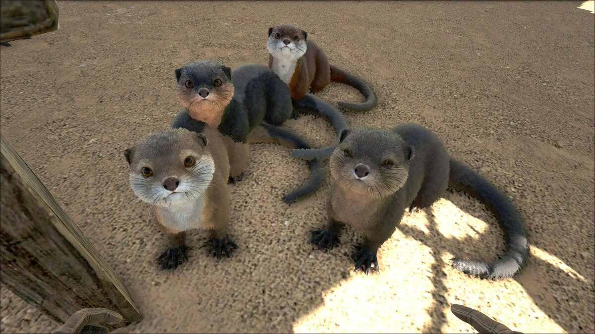 Otter ARK