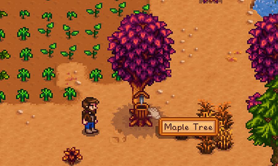 Stardew Valley Maple