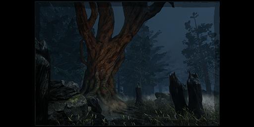shelter woods
